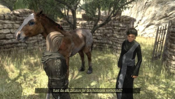 Two Worlds 2 : Zum Glück bekommen wir im Laufe einer Quest-Reihe ein Pferd, mit denen wir die Laufzeiten drastisch verkürzen können.
