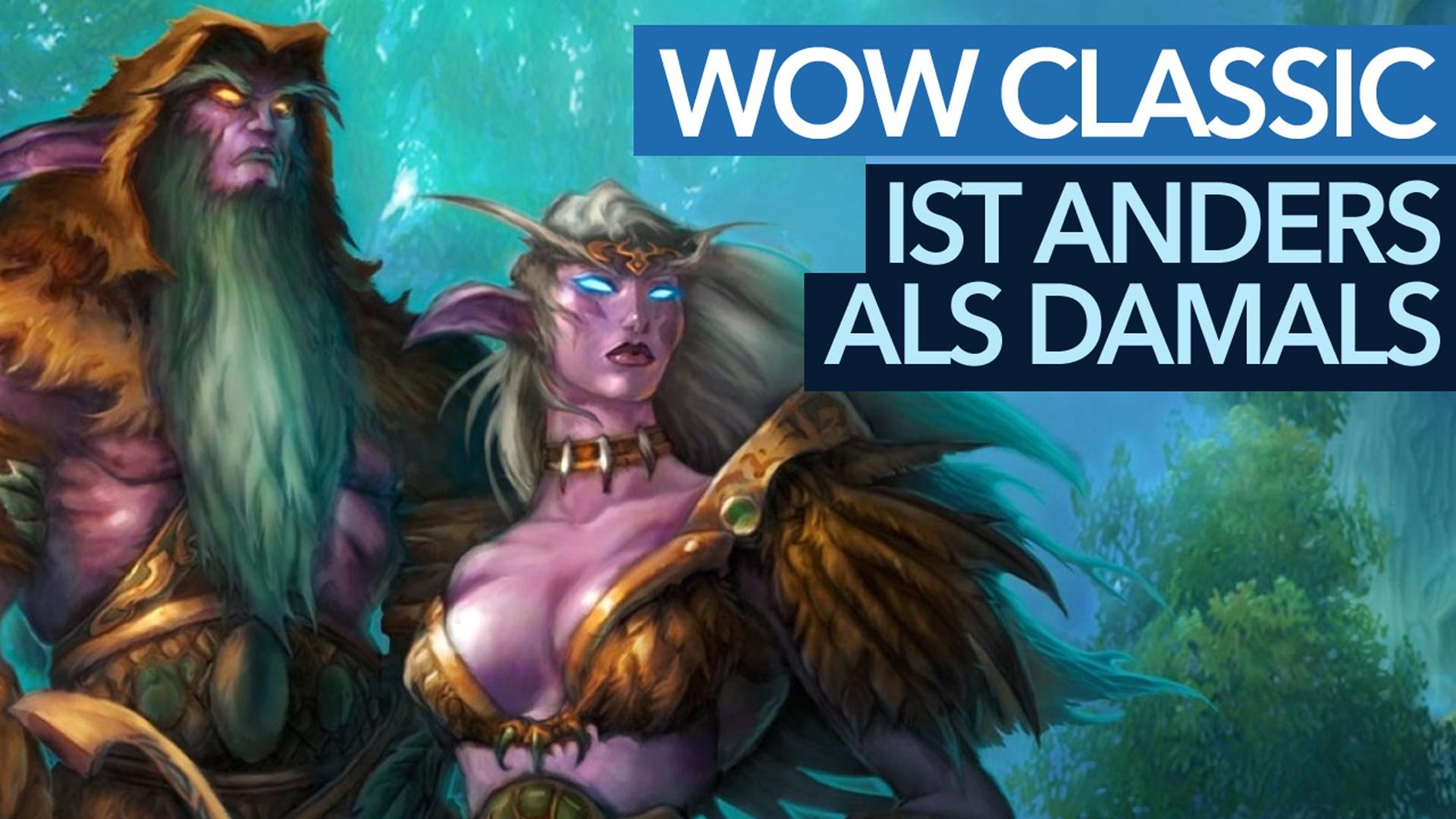 World of Warcraft ist ein anderes Spiel als damals - wegen der Spieler