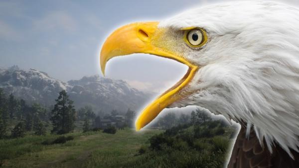 So imposant ist Red Dead Redemption 2 aus der Vogelperspektive