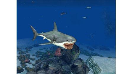 Der Weiße Hai Spiele