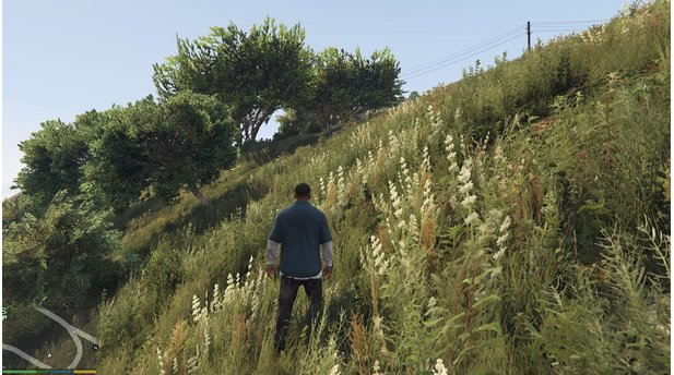 GTA 5 - Vegetation