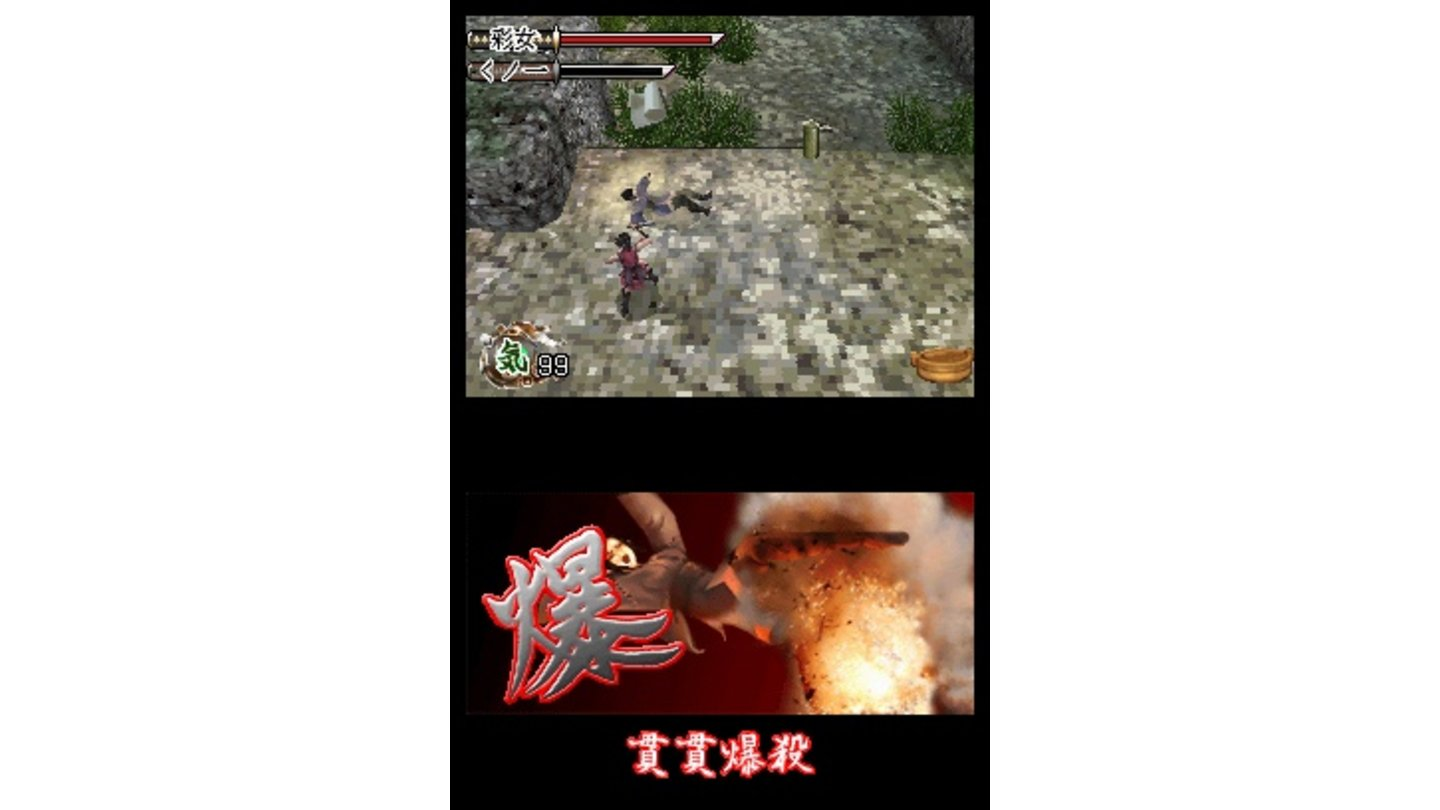 Tenchu Dark Secret DS 3